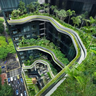 Vertical Garden - Singapore